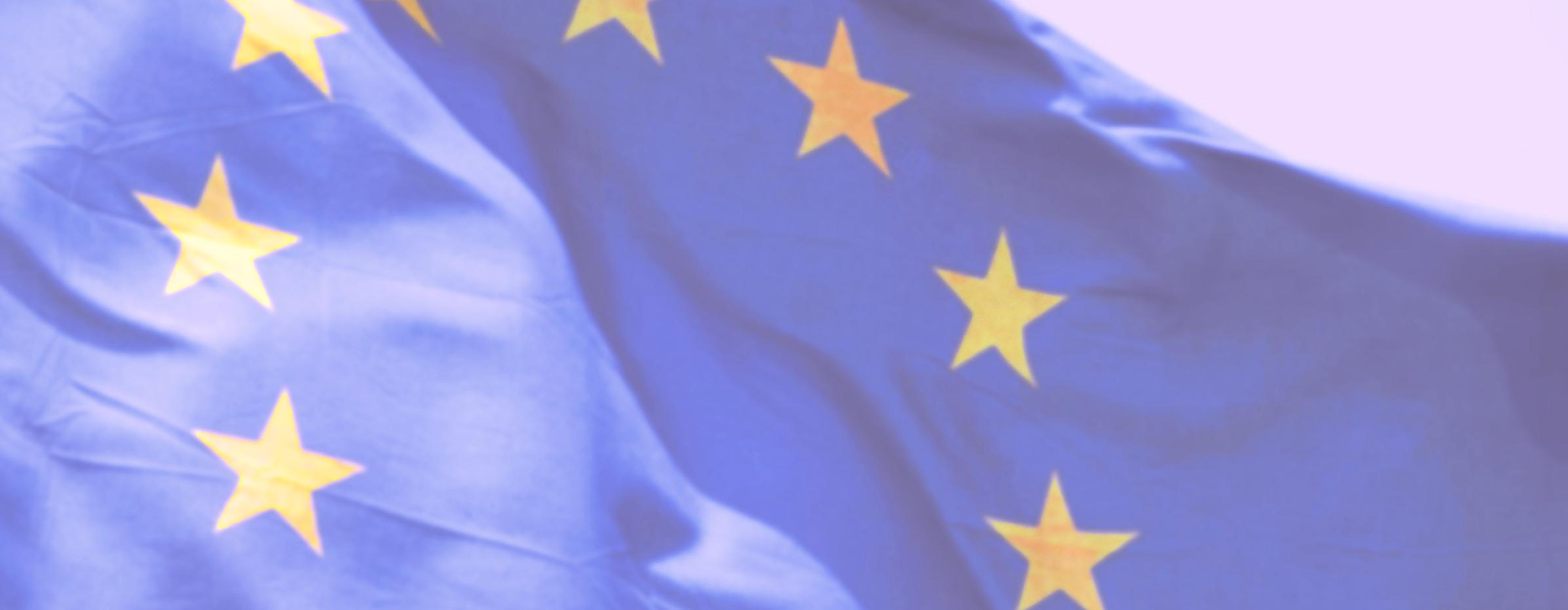 Europrogettazione, di cosa si occupa un professionista esperto in fondi europei ?
